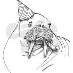 Walrus new year